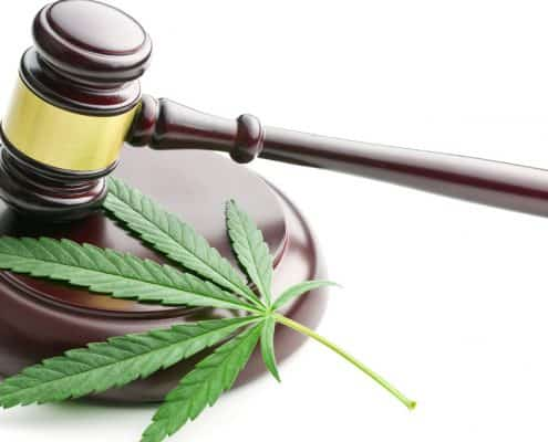 UK CBD Laws and their meaning to you